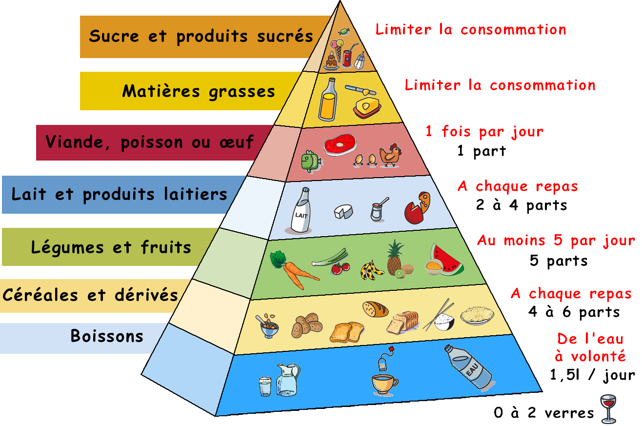 Casse-dalle   Food – Nutrition – Innovation- Science